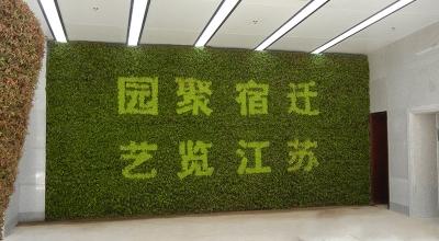 垂直绿化养护
