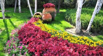 花卉园艺展览